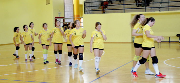 Week end Fruvit: sconfitte Under 14 e Under 18, vince la Prima Divisione in Coppa Rovigo